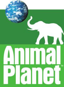 animal planet im schweizer pay tv