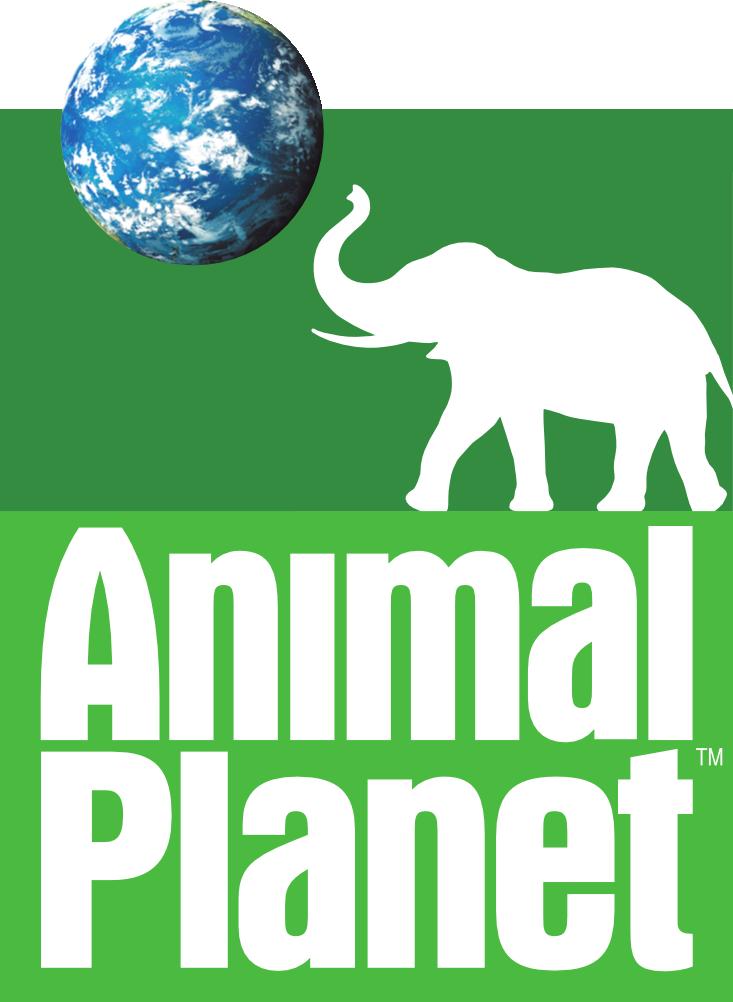 animal planet im schweizer pay tv