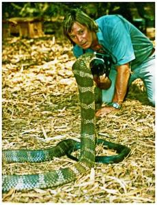 Austin Stevens mit einer Königs Kobra