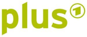eins plus logo